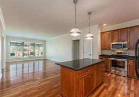 250 Daniel Burnham Sq #708